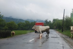 drogi w Rumunii