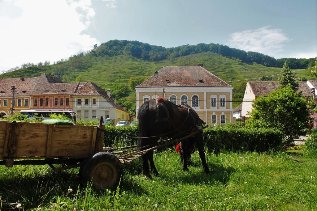 miejscowość Biertan z której znajduje się słynny koscioł obronny wpisany na listę UNESCO. I te tarasy na wzgórzach!