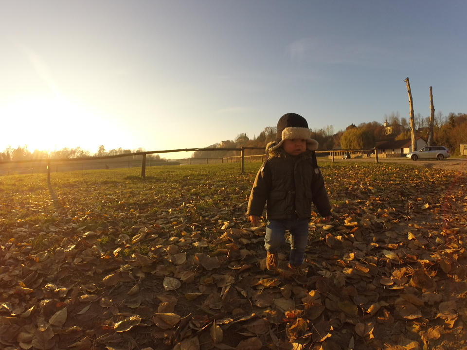 15 miesięcy, październik 2015, Podlasie